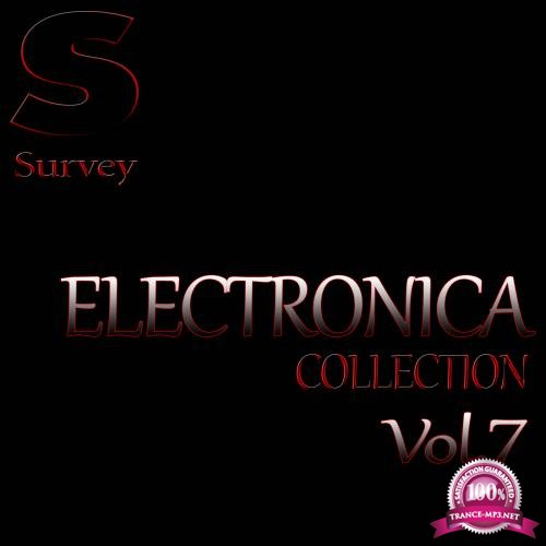 ELECTRONICA COLLECTION, Vol.7 (2018)