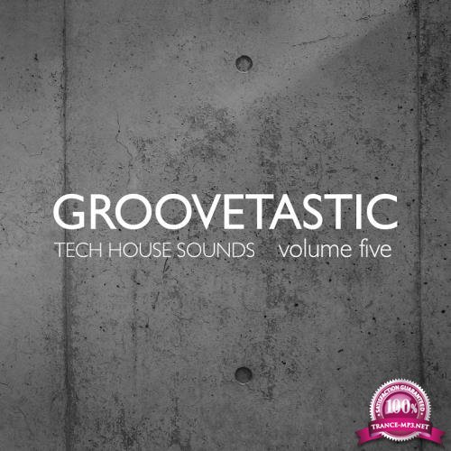 Groovetastic Vol. 5 Tech House Sounds (2018)