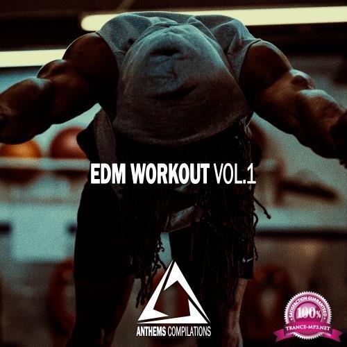 EDM Workout, Vol. 1 (2018)