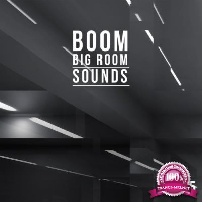 Boom, Vol. 5 (Big Room Sounds) (2018)