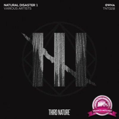 Natural Disaster 1 (2018)
