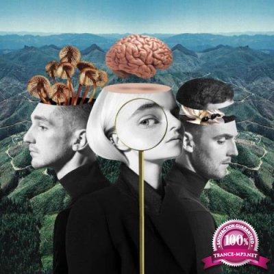 Clean Bandit - What Is Love? (Deluxe) (2018)