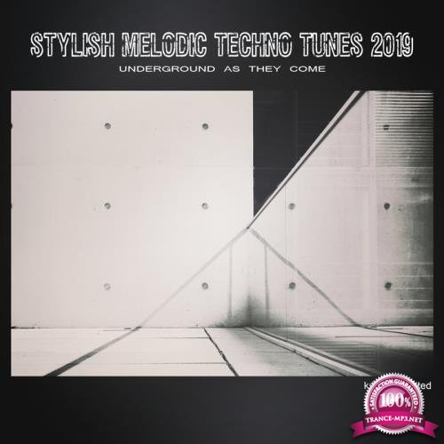 Stylish Melodic Techno Tunes 2019 Underground as They Come (2019)