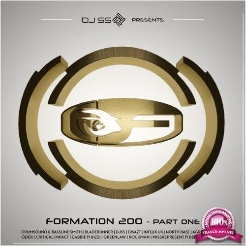 DJ SS Presents: Formation 200, Pt. 2 (2019)