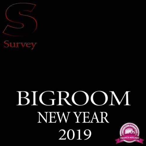 Bigroom Music New Year 2019 (2019)