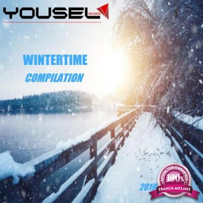 Wintertime Compilation 2019 (2019)