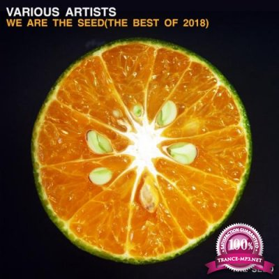 We Are The Seed (The Best of 2018) (2019)