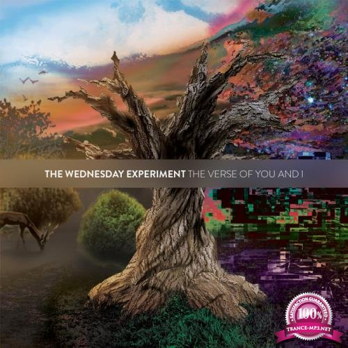 The Wednesday Experiment - The Verse Of You & I (2019)