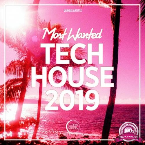 Most Wanted Tech House 2019 (2019)