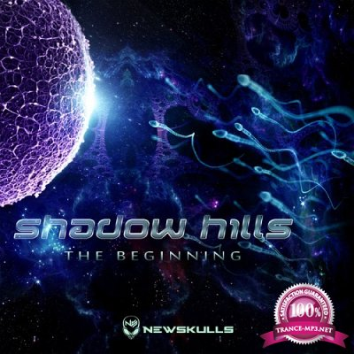 Shadow Hills - The Beginning EP (2019)