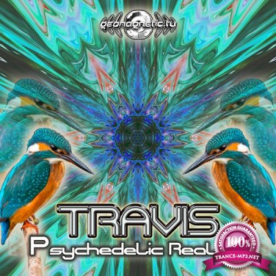 Travis - Psychedelic Reality EP (2019)