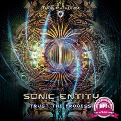 Sonic Entity - Trust The Process EP (2019)