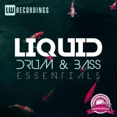 Liquid Drum & Bass Essentials, Vol. 13 (2019)