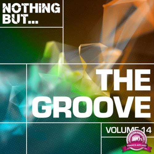 Nothing But... The Groove, Vol. 14 (2019)