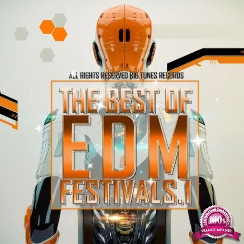 The Best Of EDM Festivals. 1 (2019)