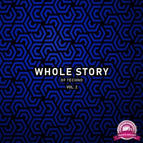 Whole Story Records - Whole Story Of Techno Vol. 2 (2019) FLAC