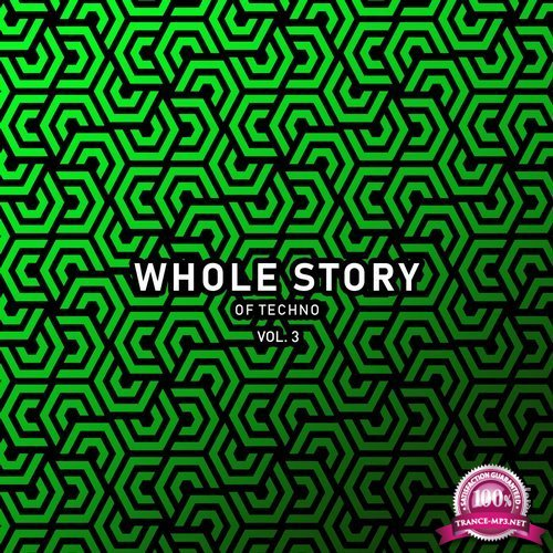 Whole Story Records - Whole Story Of Techno Vol. 3 (2019) FLAC