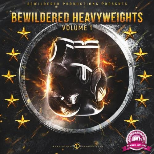 Bewildered Heavyweights Vol. 1 (2019)
