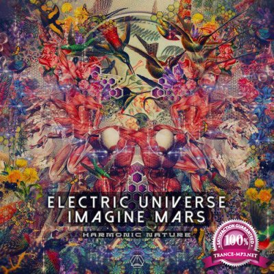 Electric Universe & Imagine Mars - Harmonic Nature (Single) (2019)