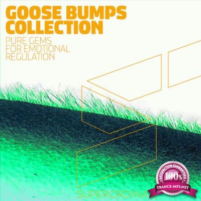 Proton LLC - Goose Bumps Collection (2019)