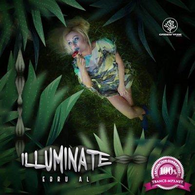 VA - Illuminate (2019)