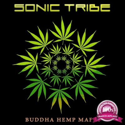 Sonic Tribe - Altruism (2019)