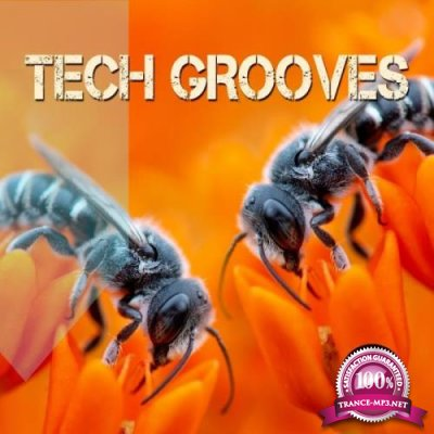 Tech Grooves (2019)