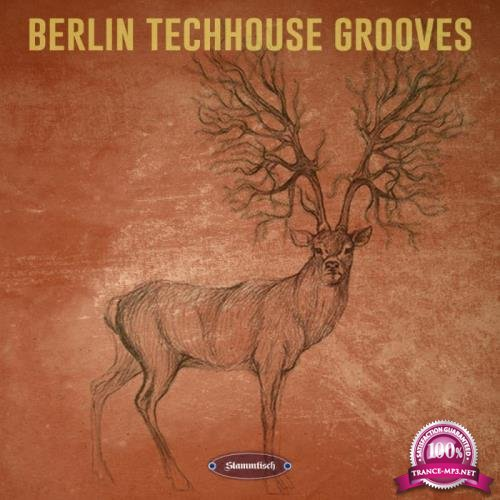 Berlin Techhouse Grooves (2019)