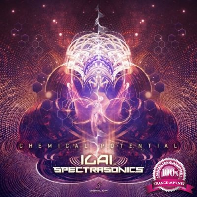 Ilai & Spectra Sonics - Chemical Potential (Single) (2019)