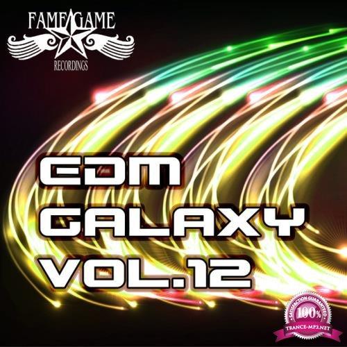 EDM Galaxy, Vol. 12 (2019)