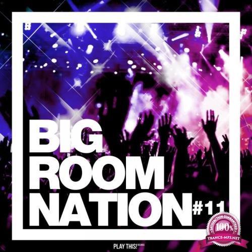 Big Room Nation, Vol. 11 (2019)