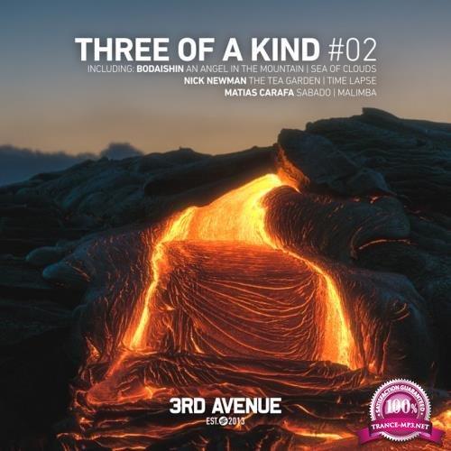 Nick Newman & Bodaishin & Matias Carafa - Three of a Kind #02 (2019)
