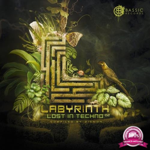 Labyrinth, Lost In Techno 02 - Compiled By ZigMon (2019)