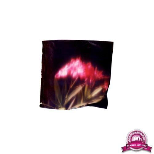 Gigi Masin & Jonny Nash - Postcards from Nowhere (2019)