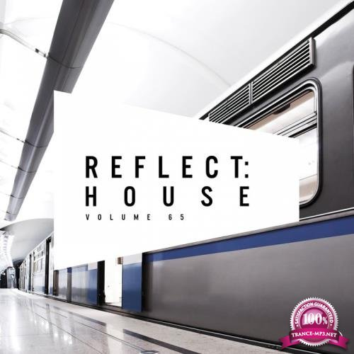 Reflect House, Vol. 65 (2019)