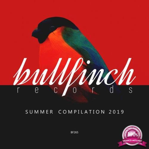 Bullfinch Summer 2019 Compilation (2019)