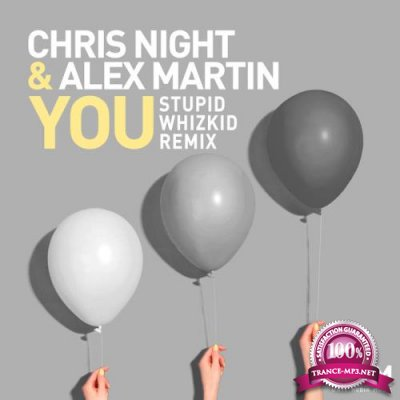 Chris Night - You (Stupid Whizkid Remix) (2019)
