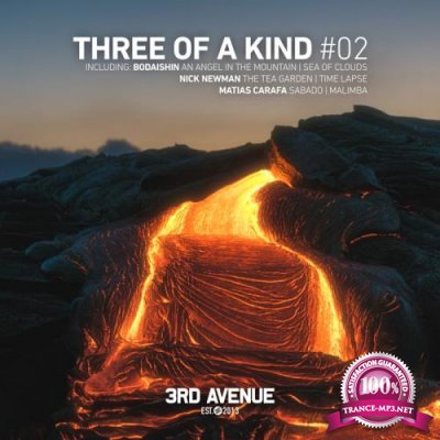 Nick Newman & Bodaishin & Matias Carafa - Three of a Kind #02 (2019)