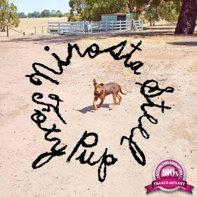 Nirosta Steel - Foxy Pup (2019)