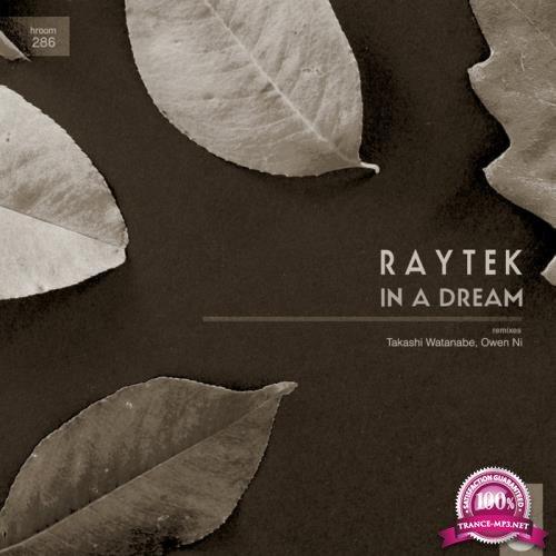 Raytek - In A Dream (2019)