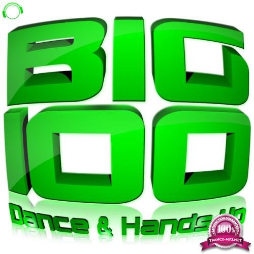 Mental Madness Records: Big 100 (Dance & Hands Up) (2013)