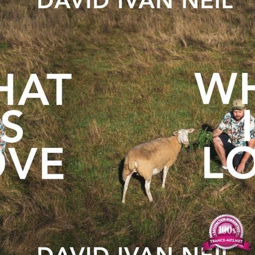 David Ivan Neil - What Is Love (2019)