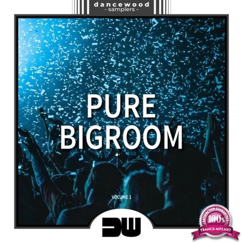 Pure Bigroom, Vol. 1 (2019)