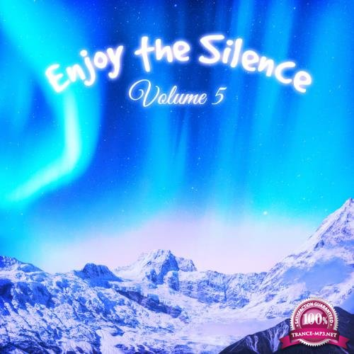 Enjoy the Silence, Vol. 5 (2019)