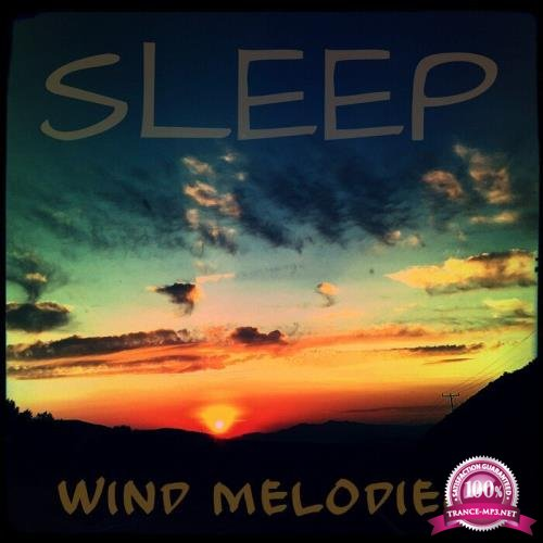 Reina Jayne Juno - Sleep Wind Melodies (2019)