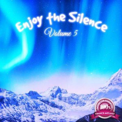 Enjoy the Silence, Vol. 5 (2019)