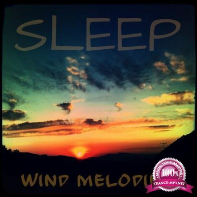 Reina Jayne Juno - Sleep Wind Melodies (2019)
