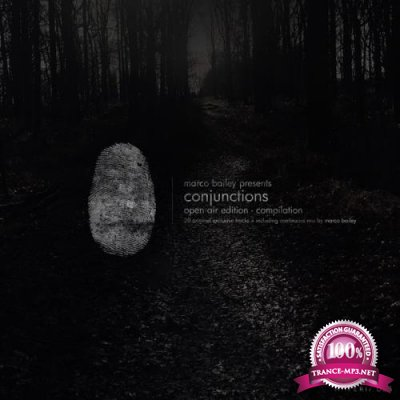 Conjunctions (Open Air Edition) (2019)