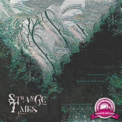 Stone Cold Fiction - Strange Times (2019)