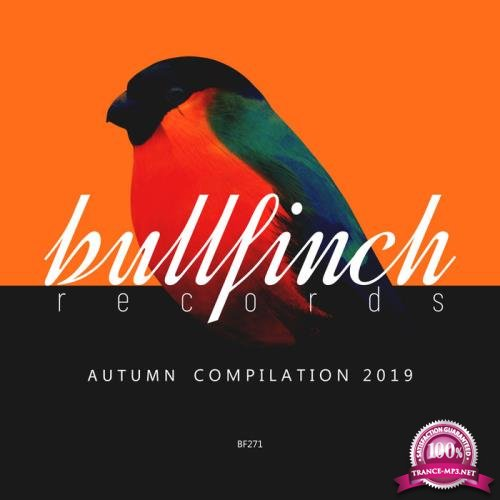 Bullfinch Autumn 2019 Compilation (2019)